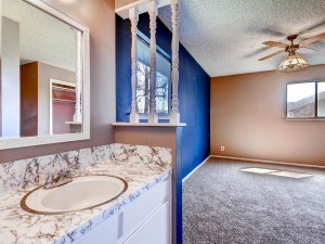 802 Buckingham Pl Austin TX-MLS_Size-018-Master Bathroom-1024x768-72dpi