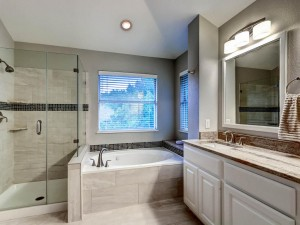 9105 Cottage Grove Pass Austin-MLS_Size-021-2nd Floor Master Bathroom-1024x768-72dpi