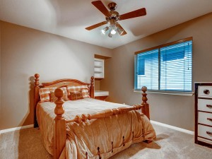 9105 Cottage Grove Pass Austin-MLS_Size-023-2nd Floor Bedroom 2-1024x768-72dpi